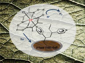 This image shows some chemical chains on a leaf.